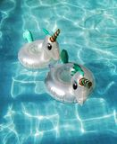 Unicorns. Two floating coasters in the shape of white unicorns in the water of a pool royalty free stock image