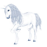 unicornwhite Arkivfoto