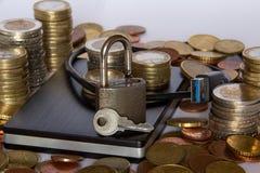 Unidad de disco duro externa y dinero imagen de archivo libre de regalías