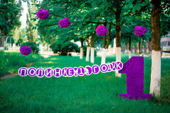 Unidad púrpura en un fondo de la hierba Foto de archivo