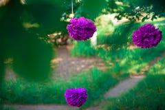 Unidad púrpura en un fondo de la hierba Imágenes de archivo libres de regalías