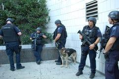 Unidade dos serviços de urgências da polícia de New York Foto de Stock