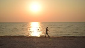 Unidentifiable man walks along shore on beach at dawn. During sunrise in the morning. Defocused video stock video footage