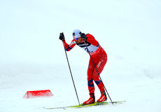 Unidentified athlete competes in the FIS Cross-Country  World Cup Royalty Free Stock Images
