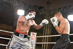 An unidentified boxers in the ring during fight for ranking points Royalty Free Stock Images