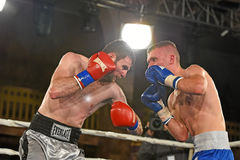 An unidentified boxers in the ring during fight for ranking points Stock Image