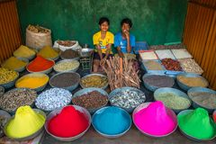 Unidentified boys sell dye powder and spices Stock Images