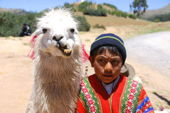 Unidentified children. RAYA PASS, PUNO - NOVEMBER 22: Unidentified children in traditional clothing with lama on November 22, 2010 in Raya Pass, Puno, Peru Royalty Free Stock Photos
