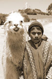 Unidentified children. RAYA PASS, PUNO - NOVEMBER 22: Unidentified children in traditional clothing with lama on November 22, 2010 in Raya Pass, Puno, Peru Stock Photography