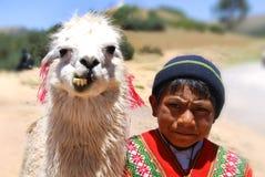 Unidentified children. RAYA PASS, PUNO - NOVEMBER 22: Unidentified children in traditional clothing with lama on November 22, 2010 in Raya Pass, Puno, Peru Stock Images