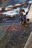 Unidentified children feeding fish Royalty Free Stock Image