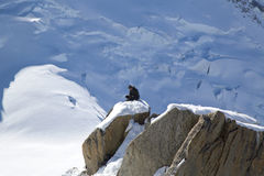 Unidentified climbers instructor at the mountain top station of the Aiguille du Midi  in French Alps Stock Photo