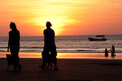 Unidentified couple walking with their dogs during Stock Images