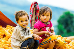 Unidentified ethnic children playing on a bundle of corns Stock Images