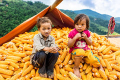 Unidentified ethnic children playing on a bundle of corns Stock Photo