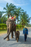 Unidentified family on an elephant ride tour Royalty Free Stock Photos