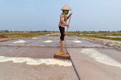 An unidentified farmers are harvesting salt Stock Photo