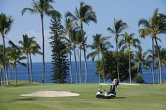Unidentified golfare tycker om en lek av golf Royaltyfria Foton