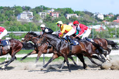 Unidentified group horses and jockeys Stock Photography
