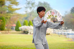 Unidentified group of people practice Chinese sword with Tai Chi Chuan in a park. BANGKOK, THAILAND - FEBRUARY 20, 2016: Unidentified group of people practice Royalty Free Stock Image