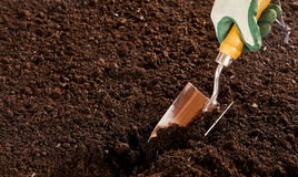 Unidentified hand using trowel in soil bed Royalty Free Stock Photos
