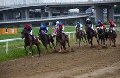 Unidentified horses and jockeys galloping in race at the Belgrade Hippodrome on Jun 19, 2016 in Belgrade, Serbia Stock Photos