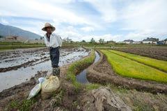 unidentified kinesiska bönder royaltyfri foto