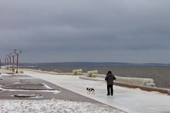 An unidentified man and his dog going through the icy deserted embankment Stock Image