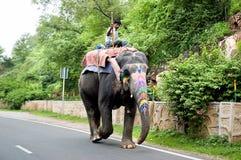 Unidentified man rides elephant along the street. Stock Image