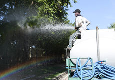 Unidentified man on water truck watering big tree Royalty Free Stock Photo