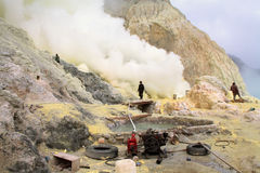 Unidentified miners harvest raw sulphur from the crater of Kawah Ijen volcano Royalty Free Stock Images