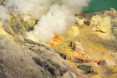 Unidentified miners harvest raw sulphur from the crater of Kawah Ijen volcano Royalty Free Stock Image