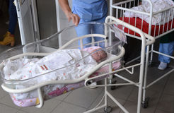 Unidentified new born babies in maternity hospital on january 8, 20016 in Sofia , Bulgaria Stock Photography