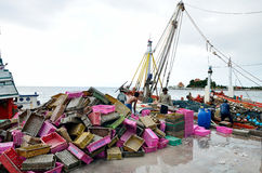 Unidentified people cleaning fish basket after trading Stock Images