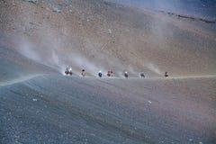 Unidentified people horseback riding Stock Photo