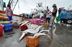 Unidentified people trading fish Stock Photos