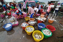 Unidentified people trading fish Royalty Free Stock Photos