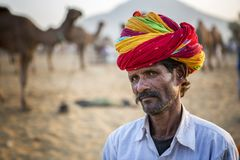 Camel trader in pushkar camel fair. Unidentified person and a trader in pushkar camel tradee fair in rajasthan, india on november 2015 Royalty Free Stock Photography