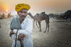 Camel trader in pushkar camel fair. Unidentified person and a trader in pushkar camel tradee fair in rajasthan, india on november 2015 Royalty Free Stock Image