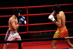 Unidentified players in Combat Fight Night Royalty Free Stock Photo