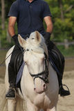 Unidentified rider and a beautiful blue eyed dressage horse gall Royalty Free Stock Photo