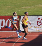 Unidentified runners in thein the last sprint Royalty Free Stock Images