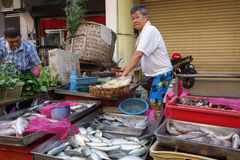Unidentified seller sell fresh raw fish at local fish market in. PENANG, MALAYSIA- 29 DECEMBER, 2016: Unidentified seller sell fresh raw fish at local fish Royalty Free Stock Image