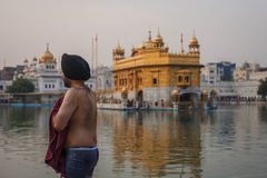 Unidentified Sikh men bath in the holy lake at Golden Temple Royalty Free Stock Photo