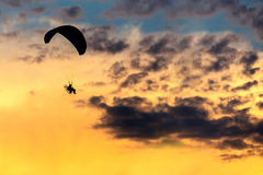 Unidentified skydiver, parachutist on sky. Silhouette of unidentified skydiver parachutist on sky with sunset Stock Image