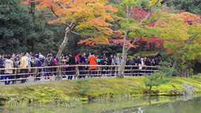 Unidentified tourist looking to Kinkakuji the Golden temple pavilion in Kyoto Japan stock footage