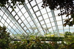 Unidentified tourists visit Cloud Forest in  Gardens by the Bay, Royalty Free Stock Image