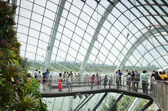 Unidentified tourists visit Cloud Forest in  Gardens by the Bay, Stock Photography