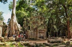 Unidentified tourists visit Ta Prohm temple Stock Photos