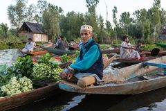 Unidentified vegetable sellers taking their produce to the floating market early in the morning on Dal Lake in Srinagar, Kashmir. stock images